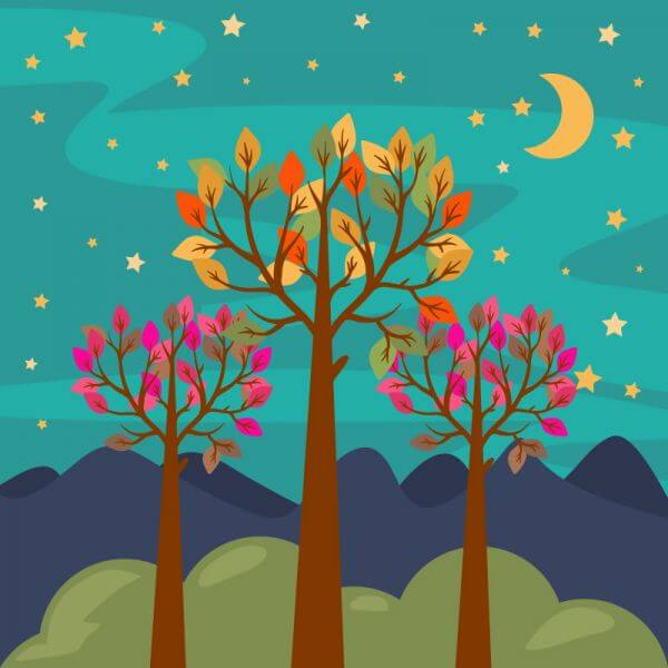 Night forest landscape vector